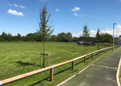 Well-maintained Lawn and Commercial Grounds