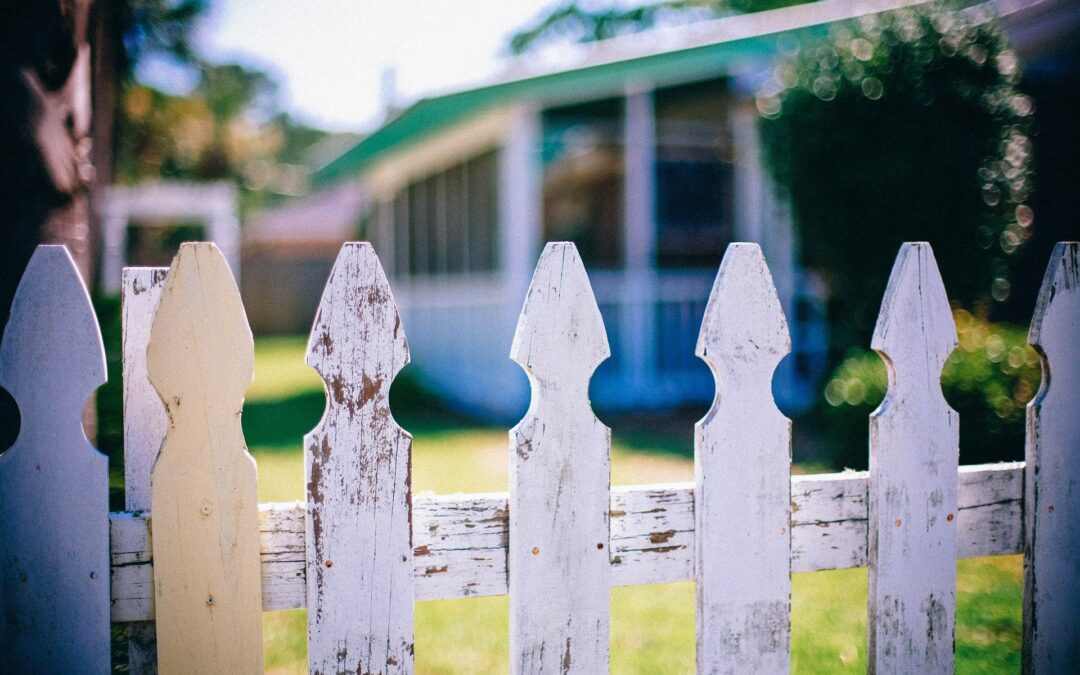 How To Care for Your Timber Fencing